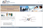 Agile Enterprise Solutions