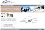Agile Enterprise Solutions