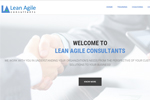 Lean Agile Consultants