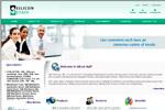 Siliconstaff Services Inc