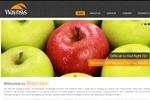 Waynsys Inc